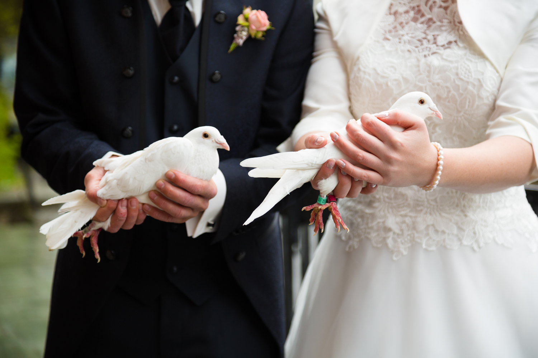 Hochzeitsfoto-Feengrotten (106)